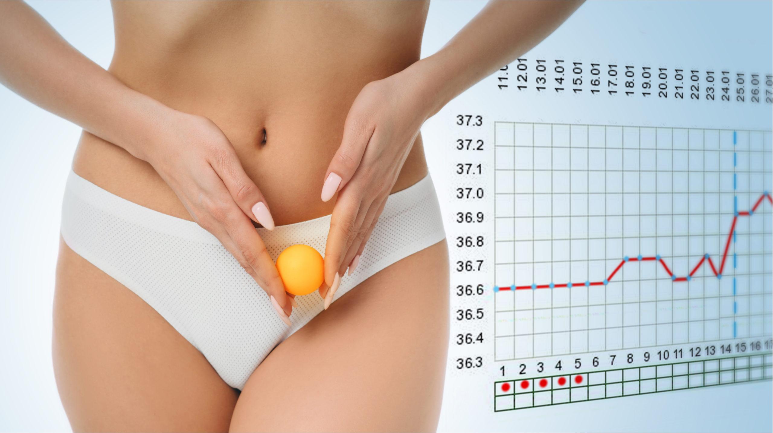 Bazální teplota je jedním z ukazatelů plodných dnů a úspěšného otěhotnění. Jak ji správně měřit?