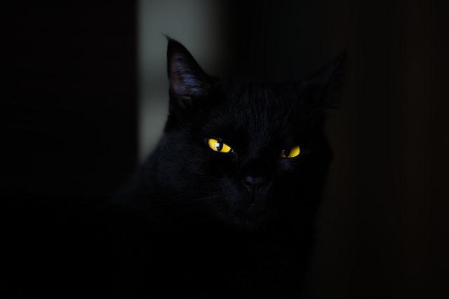 Kvíz_halloween